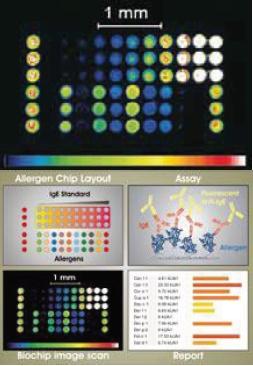 ISAC: Moleküler Alerji Paneli - 14.05.2018 - BİLİMSEL BÜLTENLER - Biruni Laboratuvarı - 0850 241 77 88