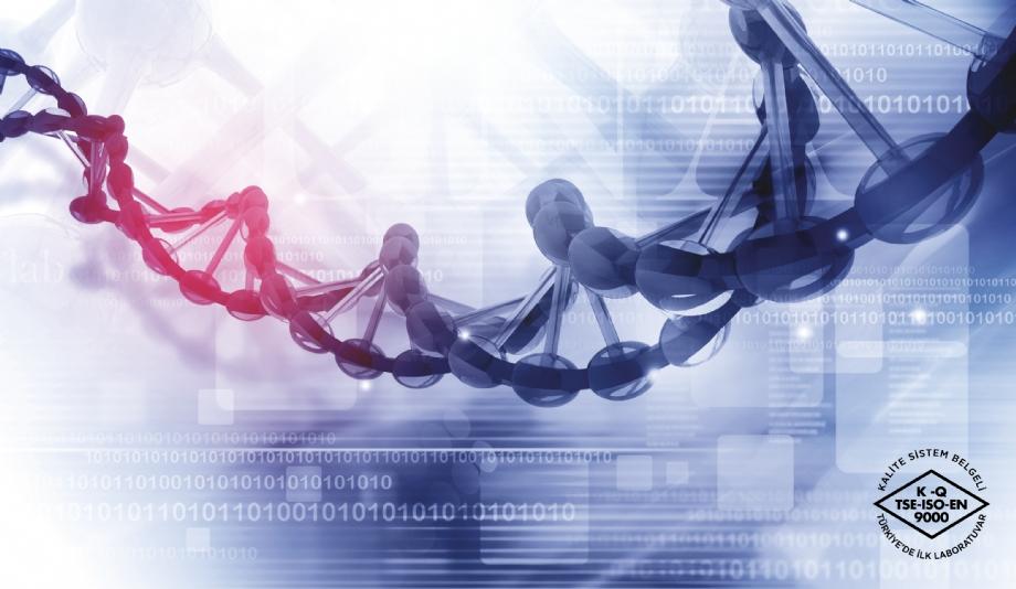 BRCA1 ve BRCA2 Genetik Testleri - 14.11.2019 - BİLİMSEL BÜLTENLER - Biruni Laboratuvarı - 0850 241 77 88